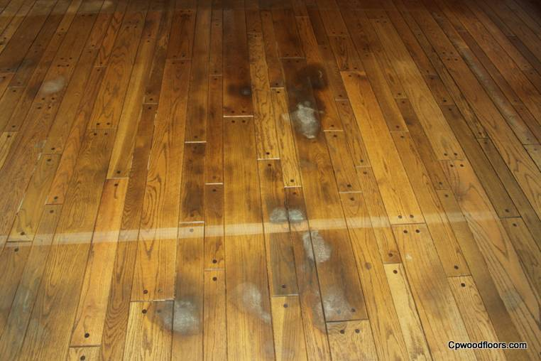 pet stained beveled wood floor mystic ct close up