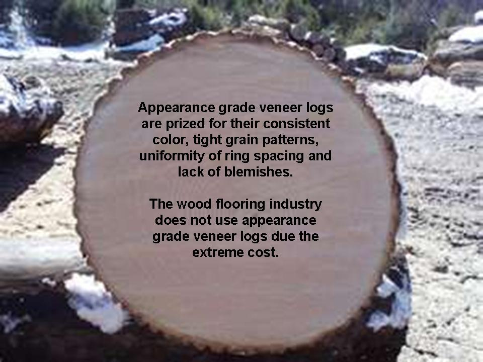 about veneer logs quality